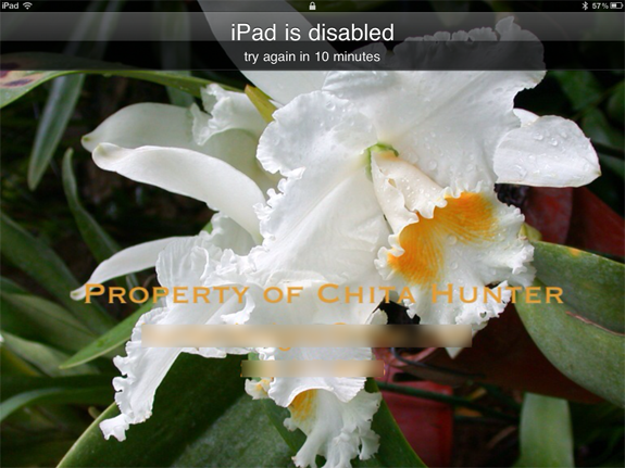iPad is disabled after entering the wrong password / passcode